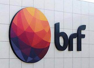 BRF - BRFS3