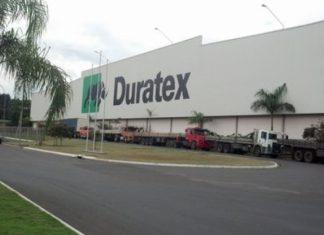 Duratex-DTEX3